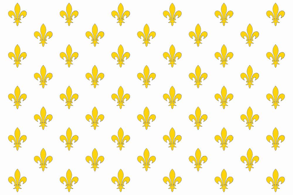 Drapeaux-Flags - Pavillon royal de France blanc